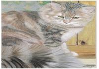 """""""Кошка на окошке"""", автор Sher Oxana"""