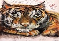 """Тигр"", автор Грацилева Светлана"