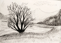 """The Hills."", автор Фадеева Алена"