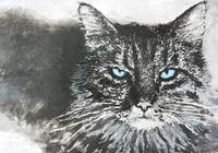 """""""Злой кот"""", автор Крамар Дмитрий"""