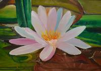 """""""Цветы."""", автор Sergey"""