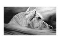 """""""Лошадь"""", автор Беккер Мария"""