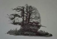 """""""Дерево"""", автор Auhsev Aleksandr"""