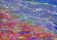 """""""Цветные сны о море"""", автор Финченко Елена"""
