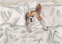 """""""пёс"""", автор Лагута Виктория"""
